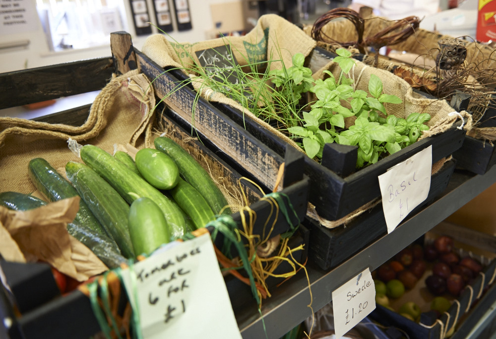 A range of produce grown by our horticulture workshop including cucumbers and basil plants