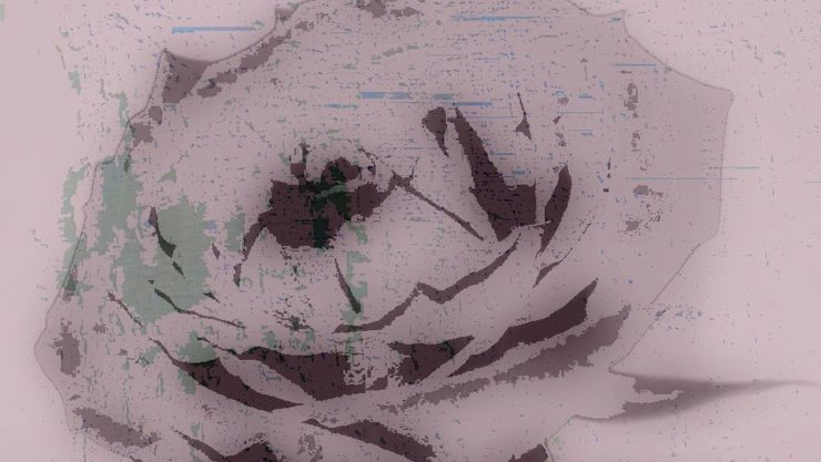 An abstract image of a rose